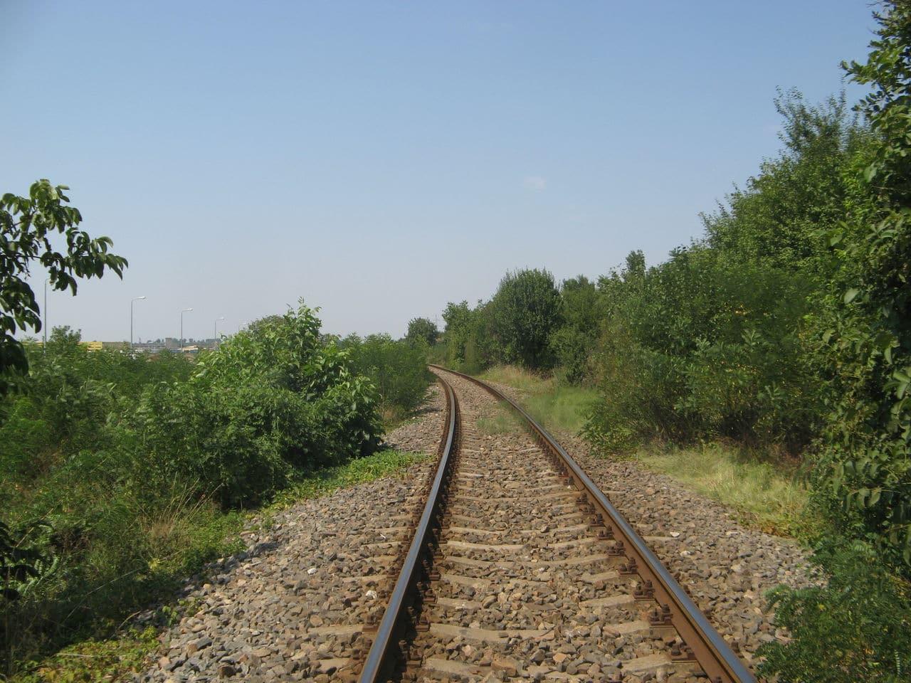 Calea ferată directă Oradea Vest - Episcopia Bihor IMG_0052