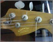 Dúvidas sobre baixos Giannini antigos - Página 5 Bass
