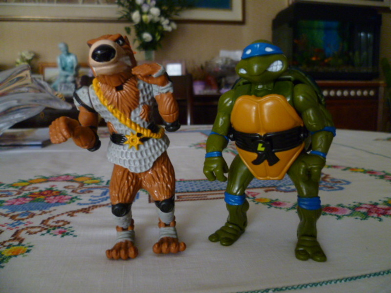 Cerco Ninja Turtles loose 3_002