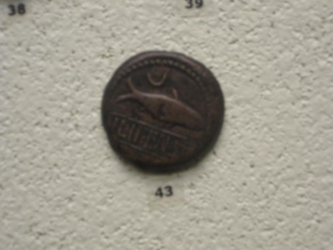 Sección numismática museo de Cádiz Cadiz10