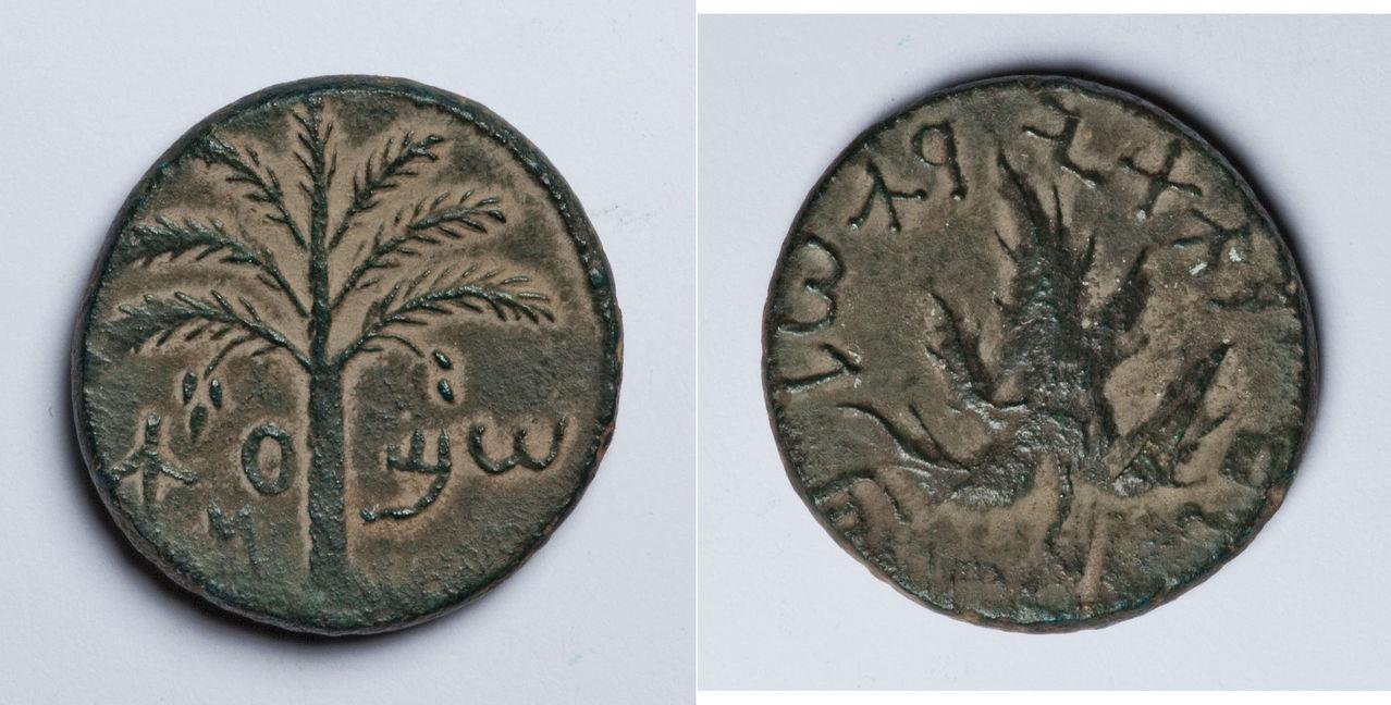 AE25 de la Rebelión de Bar Kojba. Judea. 132-135 d.C. Muestra