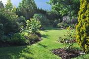 Léto na zahradě - Stránka 3 DSC_0093