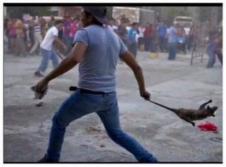Operativo de la Policía Federal en Nochixtlan Oaxaca, deja 6 Maestros Muertos, 41 policias heridos y 53 civiles lesionados. - Página 2 Tlacuachazos