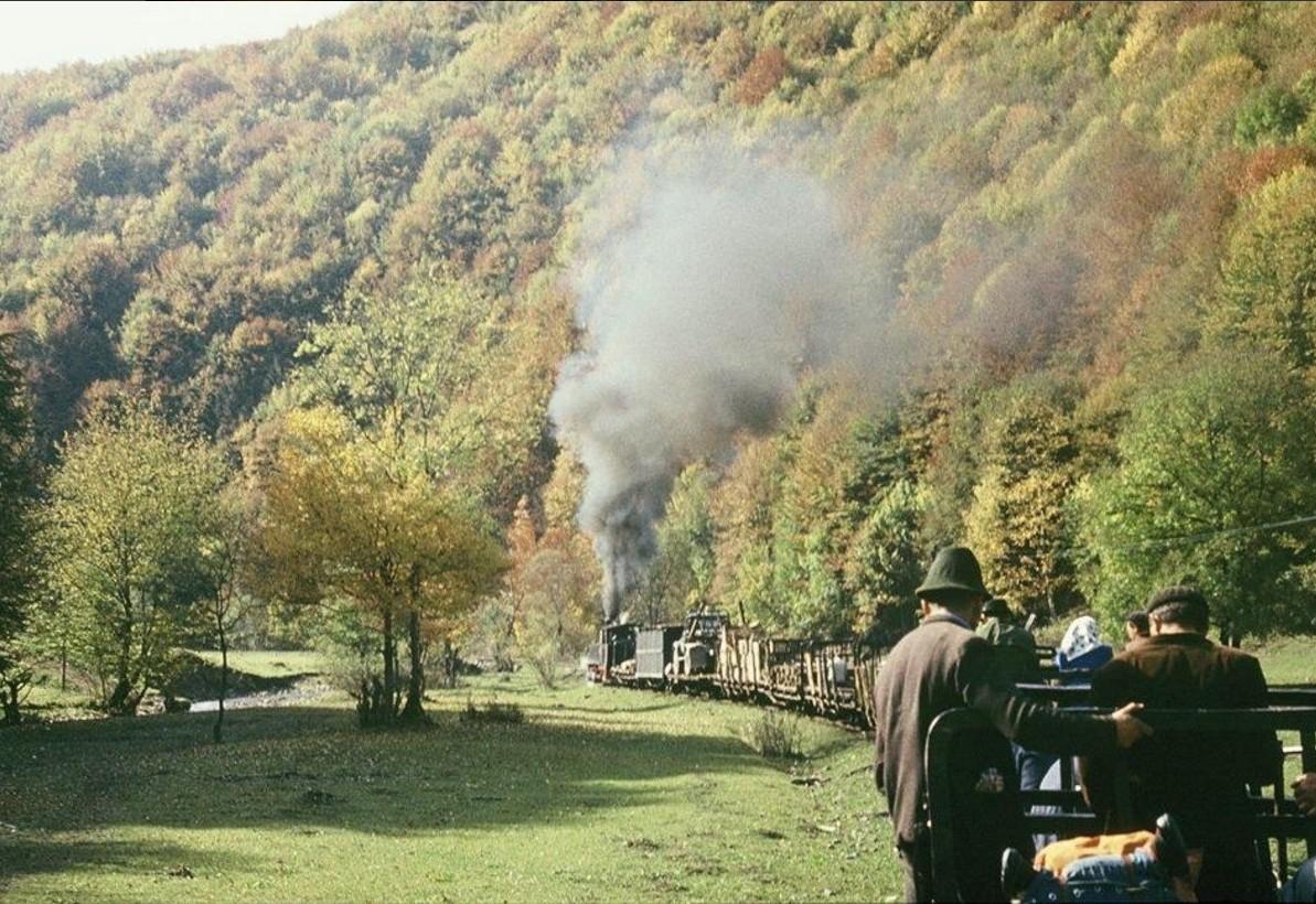 Mocăniţa de pe Valea Finişului, judeţul Bihor Image