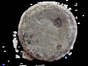 partie détachée d'un anneau DSCN4759a