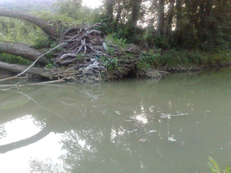 Rijeke i potoci koji izviru na Majevici 21062016144