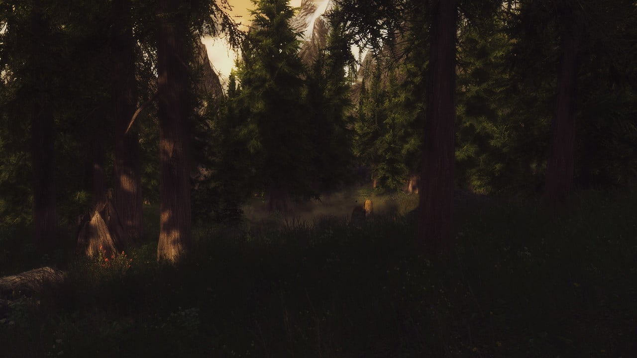Screenshots Enb_2016_05_18_19_48_05_62.