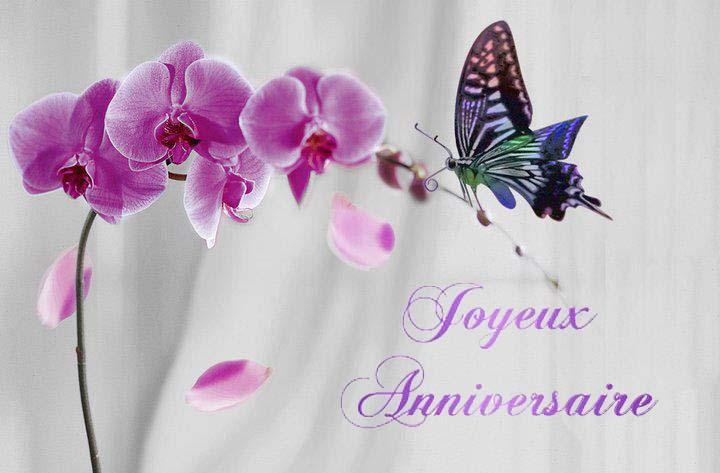 Joyeux anniversaire, Inaka ! Joyeux_Anniv_Orchideeet_Papillon