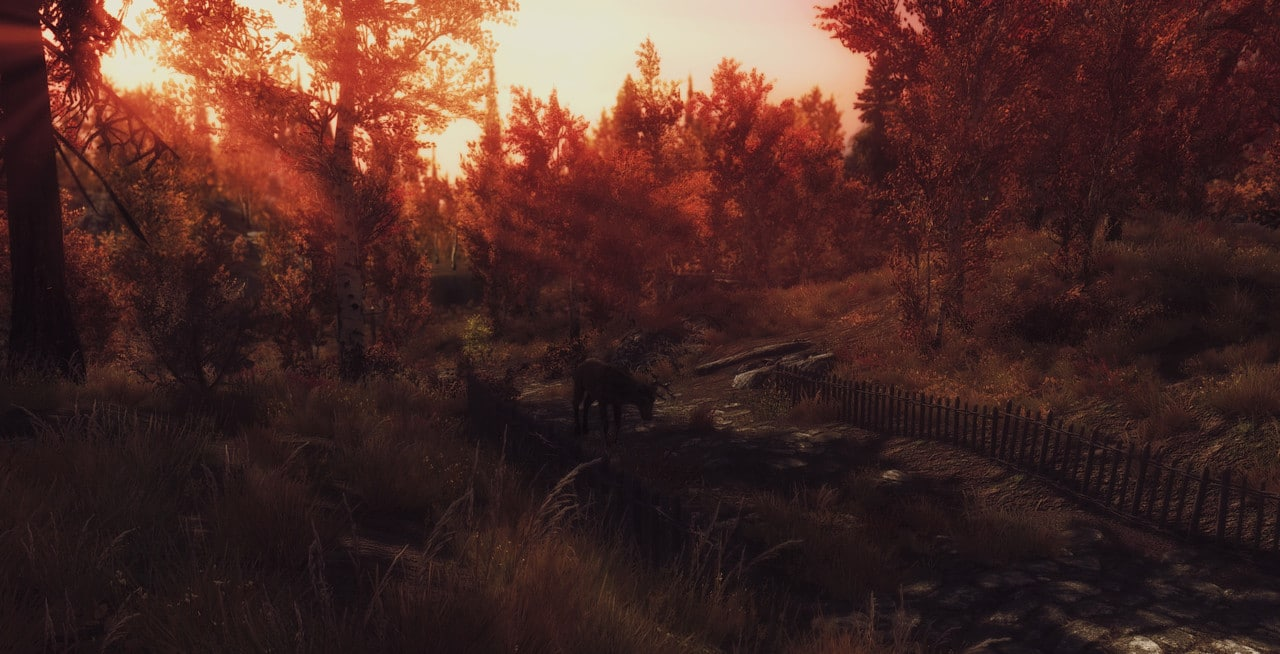 Random screenshots of random things Enb_2016_07_16_01_05_52_63