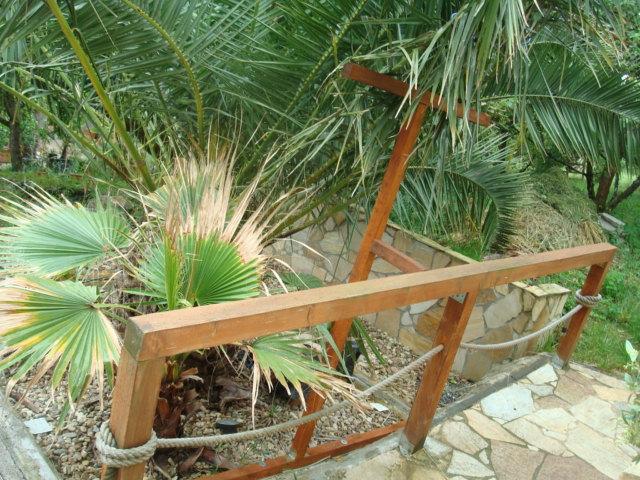 Léto na zahradě - Stránka 2 DSC00785