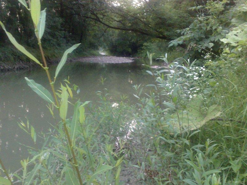 Rijeke i potoci koji izviru na Majevici 21062016143