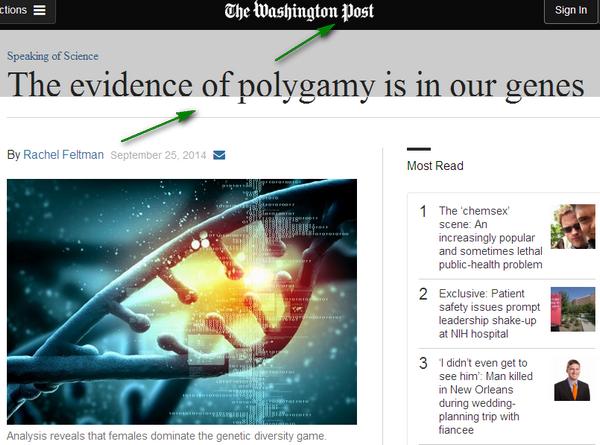 POLYGAMY POLYGAMIE فوائد و أسرار تعدد الزوجات Image