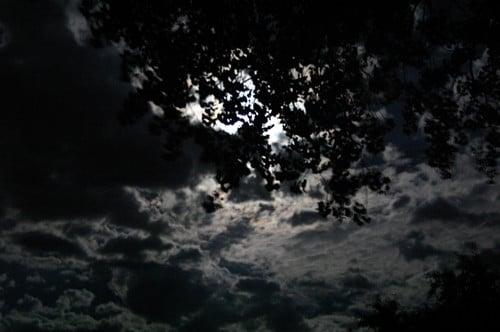 Buenas noches IV (Zarrabe) - Página 3 Foto_de_shivenis_de_la_noche