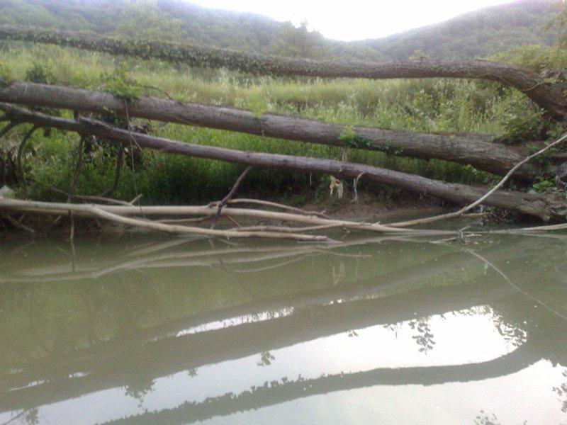Rijeke i potoci koji izviru na Majevici 21062016145
