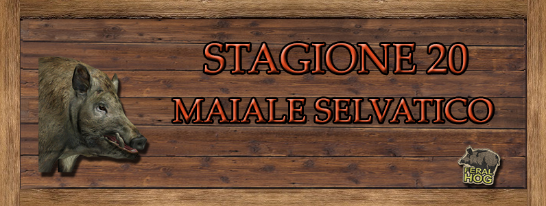 Maiale Selvatico - ST. 20 MAIALE_SELVATICO