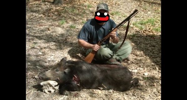 Hog Hunt with caplock worked out Hog_hunt_with_50_traditions
