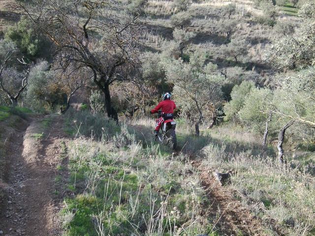 Trail extremo del bueno (fotos y cronica) Foto3447