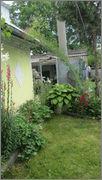 Flori si gradini - Pagina 31 IMG_1382