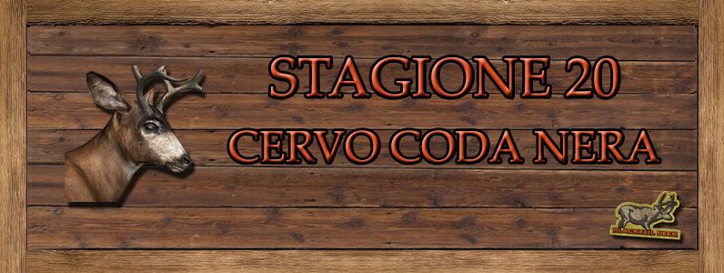 Cervo coda nera - ST. 20 Cervo_coda_nera_top_score