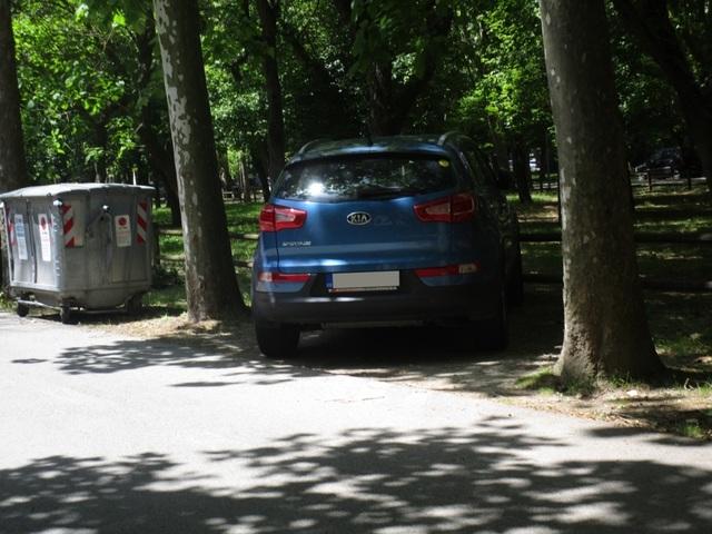 Avvistamenti auto dai colori particolari IMG_2256_FILEminimizer