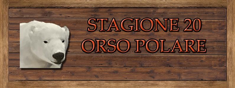 Orso Polare - ST. 20 ORSO_POLARE