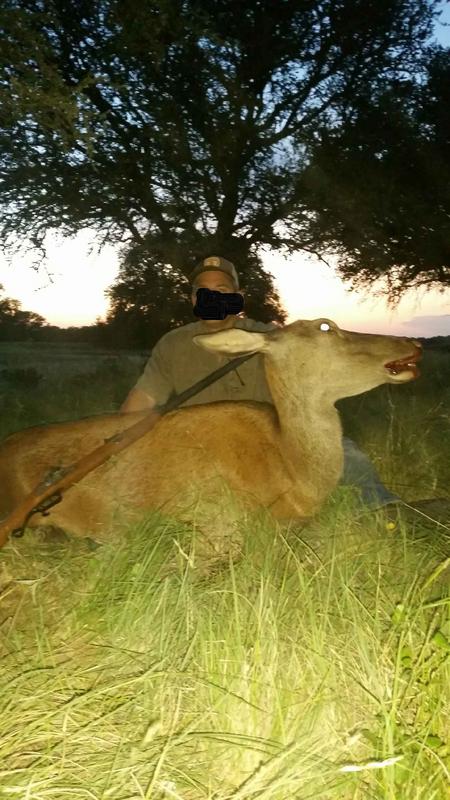 Semi-Traditional Hunt report June '18 Flintlock_Red_Deer_Edit