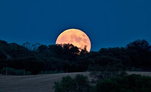 Mesečina - Page 5 Luna_llena