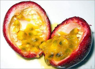 Экзотические фрукты и с чем их едят 11557ad58e4e