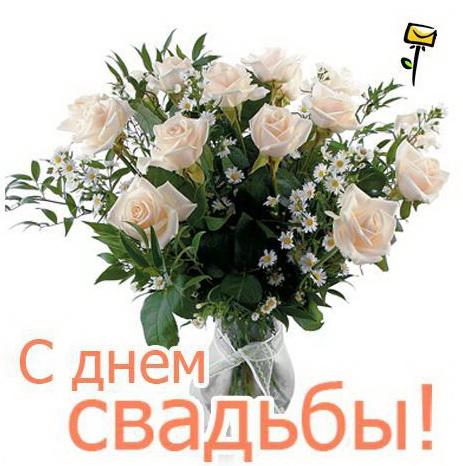 Поздравляем Светлану(Украиночку) с годовщиной свадьбы!  971272789d00