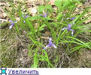 Курорт Шмаковка 089369bcecf7t