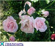 Specially for Karkela )))    Тестирование сербок и проч. 81f227fdde58t