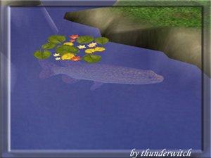 Все для аквариумов, водоемов - Страница 2 Be804e89cbb0