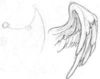 Рисуем крылья (урок) Ec5a33df4a91