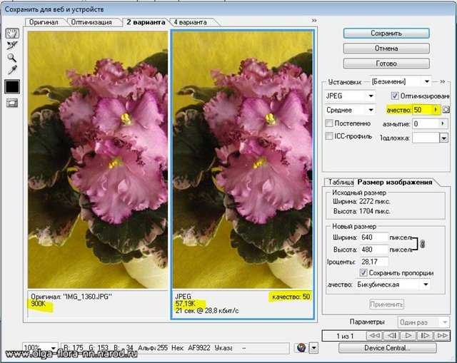 Уменьшаем вес фотографии для размещения в Интернете C13ad7ef7ff4