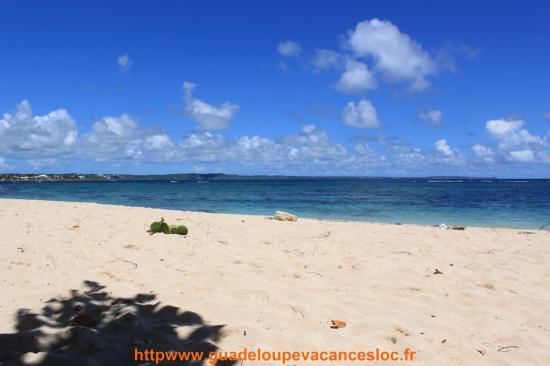 Le groupe FMVVR sur Virtual Regatta Le-moule_Guadeloupe