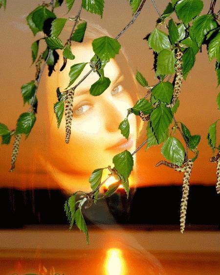 зодиак - Магия растений. Магические свойства растений. Обряды и ритуалы. Амулеты и талисманы из растений.  - Страница 3 8c0b6189bd9fe50c839676328f6d639d