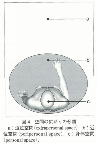 ペリパーソナルスペース(身体空間、拡張身体空間、縄張り空間) 4fc22d80