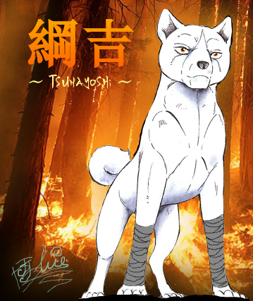 Tsunayoshi - Kylmän Tulen Ninjakoira Tsuna_Fire