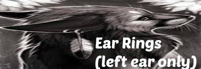 Store items Earrings