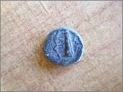 Hemilitra de Sicilia. P1190049