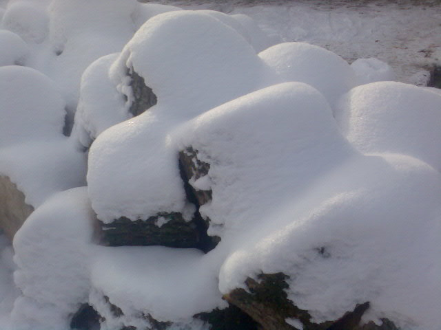 iarna ca un vis frumos Imag003