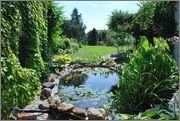 Léto na zahradě DSC_0126