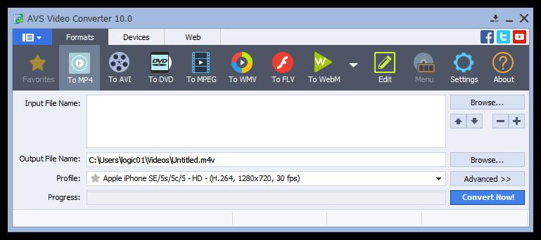 AVS Video Converter 10.0.2.612 Portable 00544