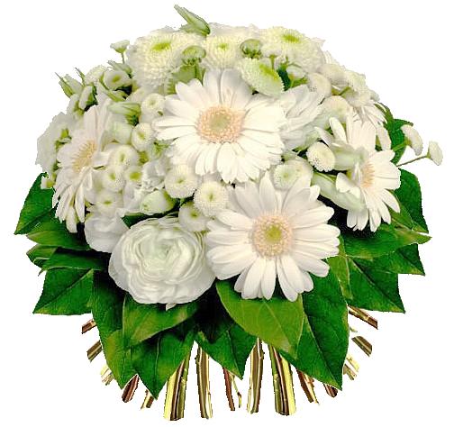 Клипарты: цветы - Страница 3 IFqw9