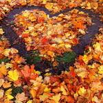 Осенние аватарки - Страница 2 0GZMf