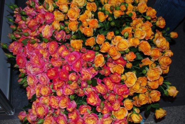 Международая выставка «Цветы.Ландшафт .Усадьба 2010» Астана - Страница 4 1551d895326f