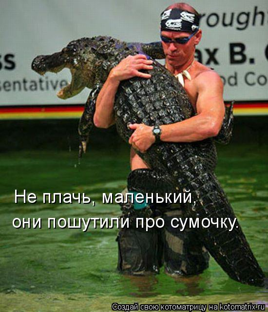 Забавные животные 011817c16147