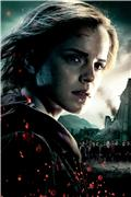 Гарри Поттер и Дары Смерти: Часть первая / Harry Potter and the Deathly Hallows: Part 1 (Уотсон, Гринт, Рэдклифф, 2010) 62ede55e40fft