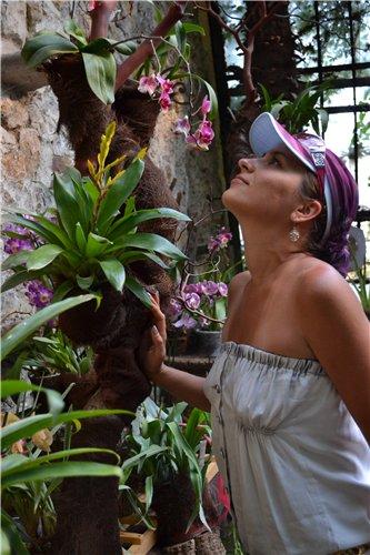 Выставка орхидей Никитского ботанического сада 51b967af2571