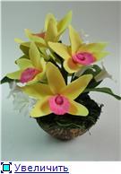Цветы ручной работы из полимерной глины - Страница 4 14634f623f1ft